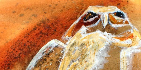 Touchstone Gallery Presents Avian Attitudes by Colleen Sabo
