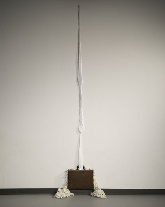 "Levester Williams The White Ladder (2013) Hand-picked cotton from a southern plantation, leather briefcase, cotton ties, thread 108"" x 20"" x 9"". Photo courtesy of the artist."