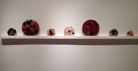 Arena objects Microbial growth on yupo paper, found objects (dimensions vary) 2014 Photo by Eric Hope for East City Art.