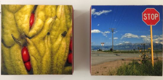 Jewels:  Red Magnolia Seeds, Sign (diptych) Leda Black Photo for East City Art by Eric Hope.