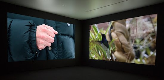 Janet Biggs, The Persistence of Hope, 2015, two-channel high definition video installation (sound, color), run time: 7:24. With Arctic footage from Katja Aglert's Winter Event-antifreeze, 2009 (filmed by Janet Biggs).