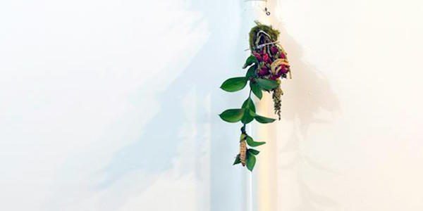 Carroll Square Gallery Presents Persistence of Flora