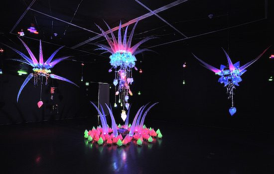 The Greater Reston Arts Center Presents Shih Chieh Huang Synthetic Transformations