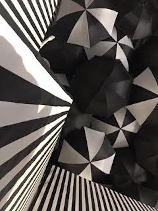 The Wells Ave Studio Presents Emily's Mind Bending Optical
