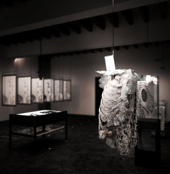 """""""The Invisible Human"""" installation view.  Photo courtesy of Ordinary Klein."""