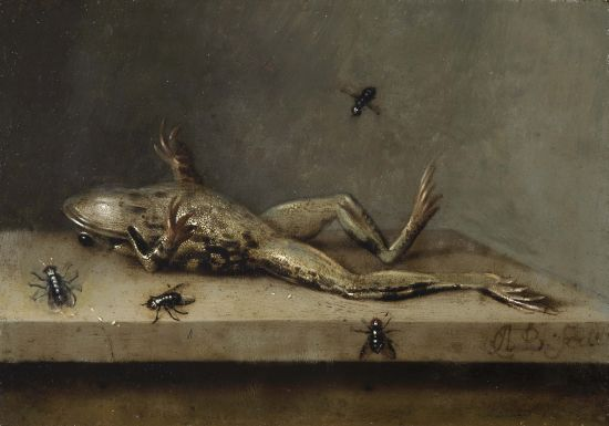 Dead Frog With Flies, 1630 (approximate date) Ambrosius Bosschaert Image Courtesy of Fondation Custodia, Collection Frits Lugt, Paris.