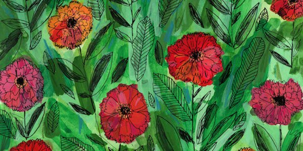 Wild Hand Workspace Presents Illustrations by Elizabeth Graeber