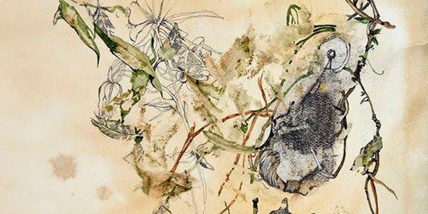 artdc Gallery Presents Welcome to Wonderland: Rethinking Landscape