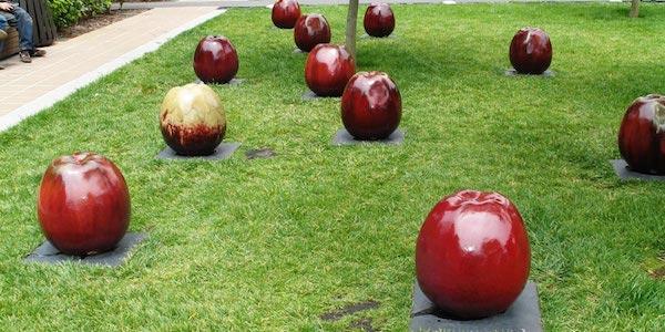Riverdale Environmental Public Art Project Request for Proposals