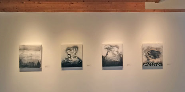 Montpelier Arts Center's Library Gallery Exhibition Competition Call for Entries