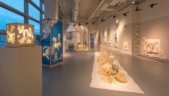 Stephanie Garmey, Edge of the Forest, 2015, Mixed media, Dimensions variable. Photo courtesy of VisArts at Rockville.