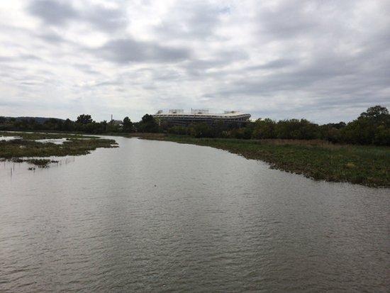 RFK Stadium from Kingman Lake.  Photo by Phil Hutinet for East City Art.