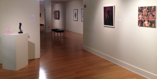 New Arrivals 2015 exhibition view. In the foreground are works by (from left) Wafaa Bilal, Elle Pérez and John Paradiso. Photo for East City Art by Eric Hope.