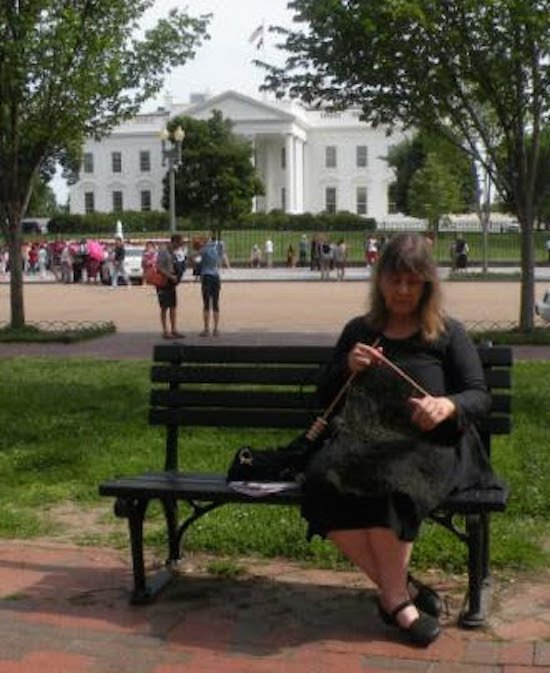 Michele Colburn, The Tripwire Project, The White House. 2014-2015. Courtesy of AAC.