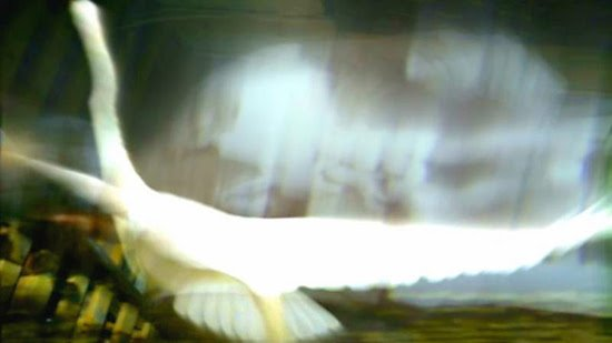 Video Still, ,All that we see or seem, by Tim McLoraine.