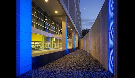 Photo courtesy of Arlington Arts.