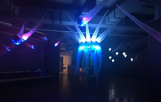 Synthetic Transformations, installation view Shih Chieh Huang Photo for East City Art by Eric Hope.