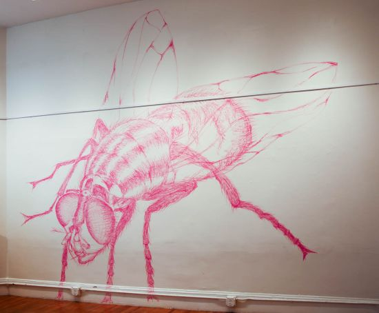 Carolina Mayorga's Untitled site-specific drawing in its finished state. Photo courtesy of the artist.