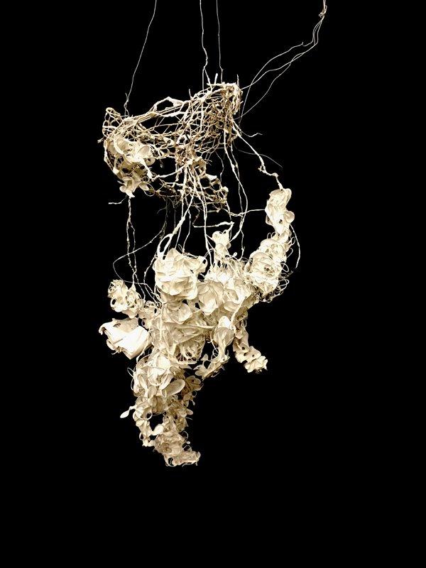 Weiss_purity-nest-a