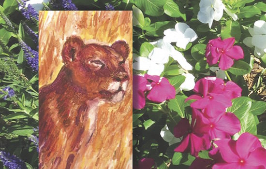 Washington Printmakers Gallery Presents Marian Osher WILD about Spring
