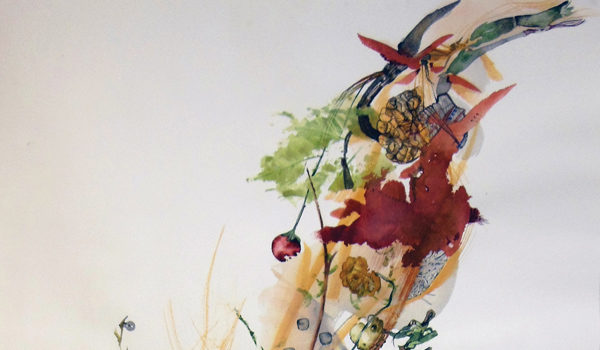 Botanica Magnifica : Pam Rogers' Artistic Process Revealed