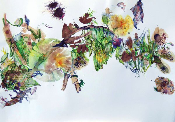 Pam Rogers  Summer Solstice  Plant, mineral and soil pigment, graphite and ink  28 x 36  Image courtesy of the artist