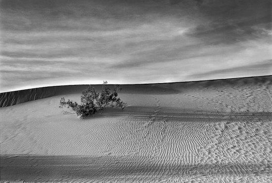 Dunes in the PM, Death Valley N.P., CA by Harvey Kupferberg. Courtesy of Touchstone Gallery.