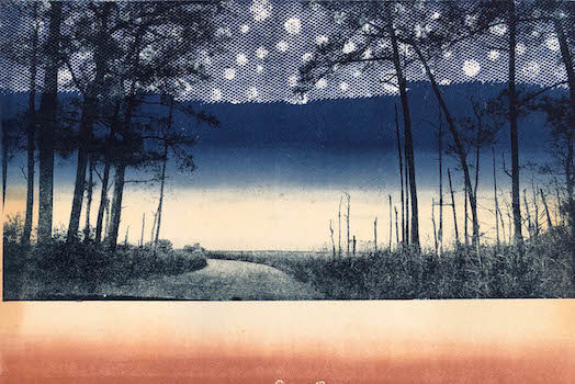 Willow Street Gallery Presents Printmaking: Alternative Paths Group Exhibition
