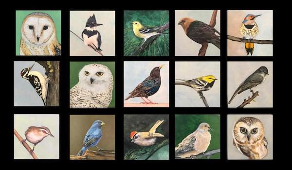 Cross MacKenzie Gallery Presents Flock Group Exhibition