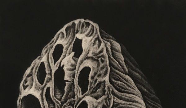 Washington Printmakers Gallery Presents Nina Muys & Julie Niskanen Skolozynski Natural Connection