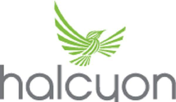 Spring 2021 Halcyon Incubator Fellows Announced