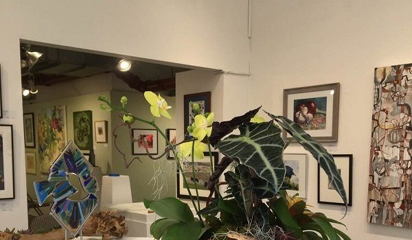 The Art League Presents March Flora/Fauna and Chris Bonnell Outside the Lines