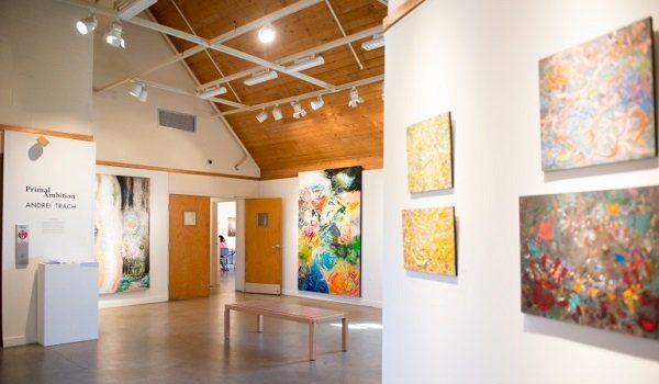 Montpelier Arts Center Library Gallery Competition