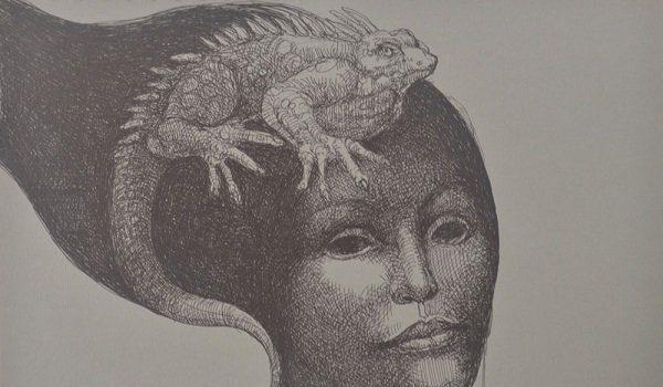 The OAS AMA | Art Museum of the Americas Presents Fernando Carballo Plumilla